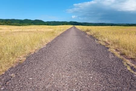 plan éloigné: Entraînement sans fin sur la route goudronnée à la journée ensoleillée