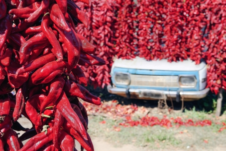 resourcefulness: Finding a weird place for drying paprika Stock Photo