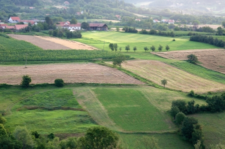 Cultivated fields in hilly areas photo