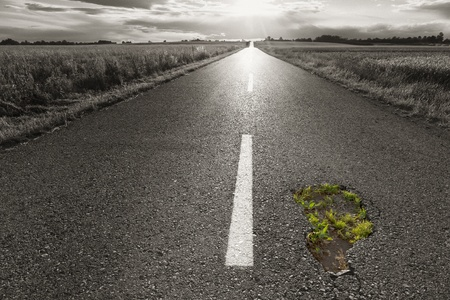 Young green grass grows from the dangerous pothole photo