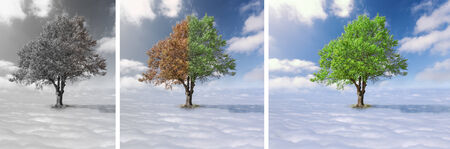 Concept for changes - Collage - Single tree with green and red leaves above the clouds at the idyllic sunny day photo