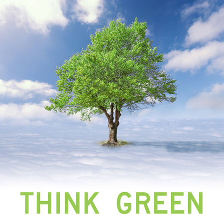 Ecology concept - Single tree with green leaves above the clouds at idyllic sunny day photo