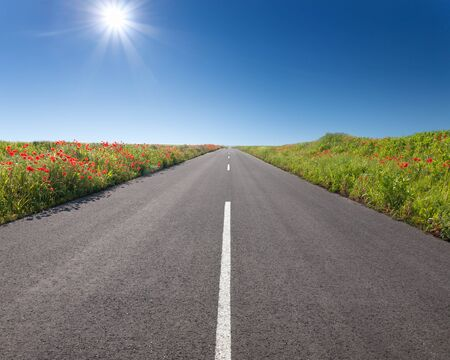 back roads: Driving on an empty asphalt road through the plain agricultural area at idyllic sunny day.