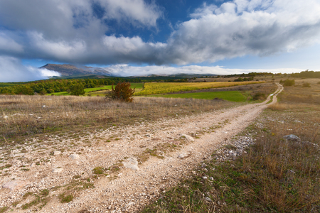 neglected: Empty dirt road which leads through neglected agricultural land at autumn sunny day Stock Photo