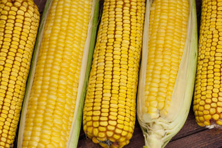 corn cob: Young and old corn cobs lined up alternately on the wooden table Stock Photo