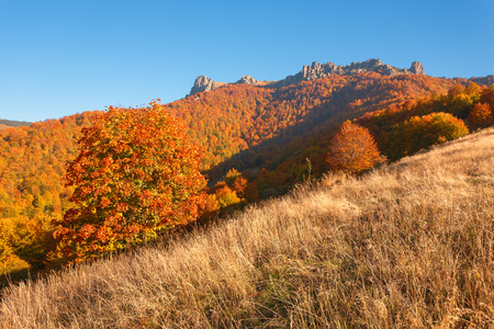 Autumn landscape with a view on colorful forest and rock formation in background. Babin Zub, Serbia.