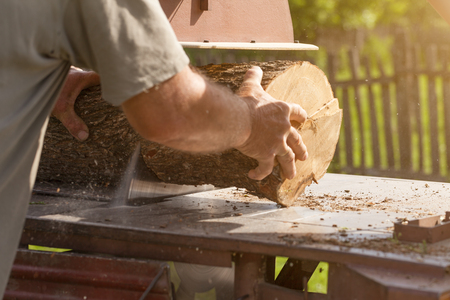 protective wear: Cutting wooden logs with a circular saw before the heating season without protective wear.