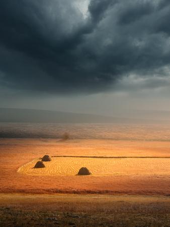 vastness: Mountain culivated plateau before the storm illumated by sunbeam near Zabljak, Montenegro.