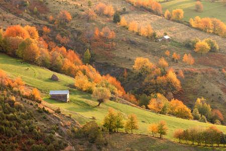 fall sunrise: Idyllic mountaian scenery in autumn ambiance illuminated by morning sunlight. Mountain Golija, Serbia. Stock Photo