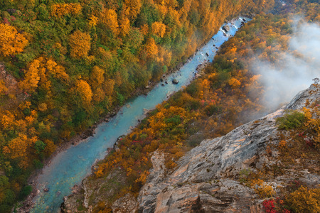 tara: Early morning at colorful autumn with a view on the canyon of the river Tara in Montenegro from above. Deepest river canyon in Europe and it is protected as a part of Durmitor National Park and is a UNESCO World Heritage Site. Editorial