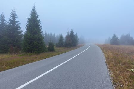 curve road: Driving on winding mountain road through the foggy spruce woods at misty morning in autumn.