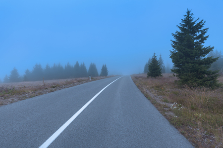 curve road: Driving on winding mountain road through the misty spruce woods at spooky morning in autumn.