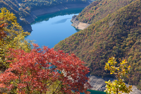 Colorful scenery to beautiful nature in autumn ambience at idyllic morning in one part of canyon Piva, Montenegro. Stock fotó