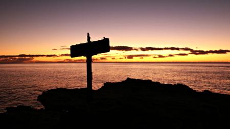 Pacific Sonnenuntergang mit Querschattenbild in Oahu Hawaii Standard-Bild - 62785484