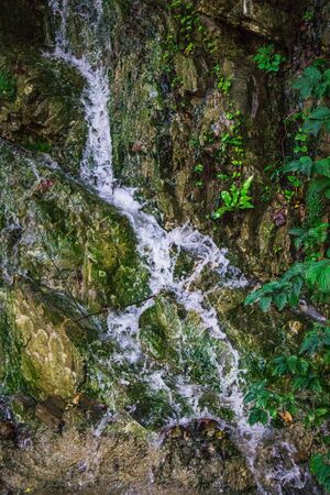 mineral spring in the mountains, water flows from the mountains