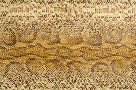 rawhide: Snake Leather texture Stock Photo