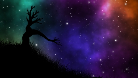 Fantasy forest with big creepy tree on hill under beautiful sky and stars field at night illustration design background. Reklamní fotografie