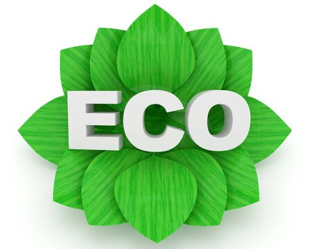 ECO word and green leafs over a white background (Ecology Concept) photo