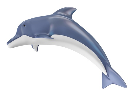 Beautiful Dolphin isolated on white background photo