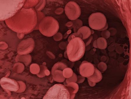 hemorragias: Ilustración digital de un Red Blood Cells que fluye a través de la vena Foto de archivo