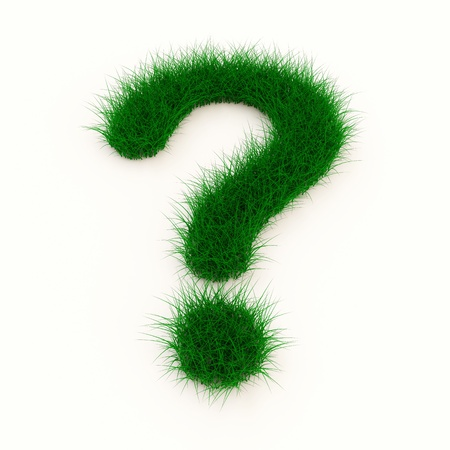 whose: Grass Question Mark Symbol isolated on white background Stock Photo