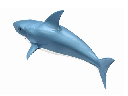 3d Shark isolated on white background photo