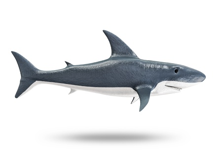 seawater: 3d Shark isolated on white background Stock Photo