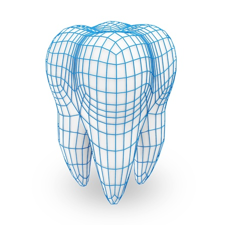 tooth icon: Human Tooth with Grid isolated on white background  Protection Concept  Stock Photo