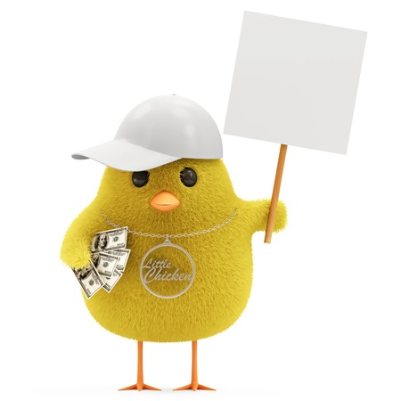 Cool Little Chicken with Blank Board isolated on white background