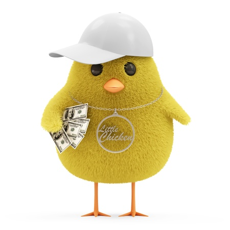 fluff: Cool Little Chicken with Cap and Money isolated on white background