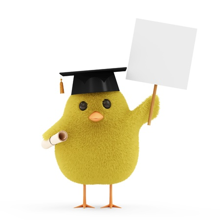 Little Chicken Student with Blank Board isolated on white background photo