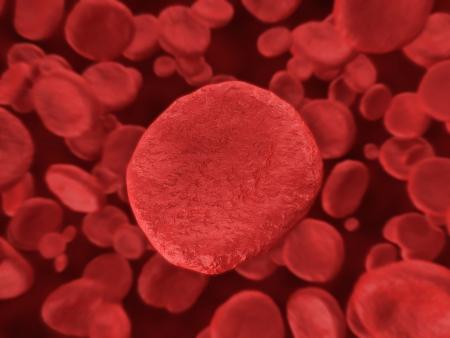Digital Illustration of a Red Blood Cells Flowing Through Vein Stock Illustration - 23568593