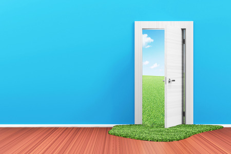 Empty Room 3D Interior with Opened Door and Beautiful Landscape behind photo