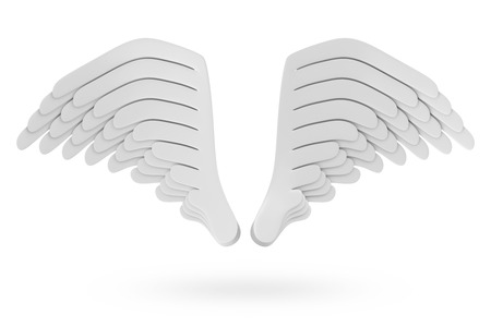 3d dove: Angel White Wings isolated on white background