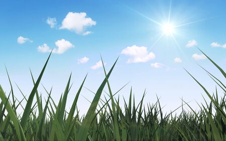 lea: Spring and Summer Seasons Concept. Closeup View of Beautiful Meadow with Green Grass Sunshine and Flowing Clouds over Blue Sky Stock Photo