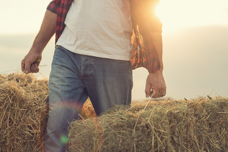 Farmer with straw bales harvest