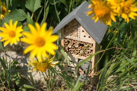 Green technology. insect hotel house in garden Stockfoto