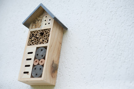 Green technology. insect hotel installed on house wall in garden