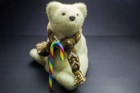 valentine s day teddy bear: White polar bear toy with candy on black background