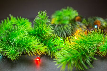 fir branches with christmas multi-colored garland on a black background