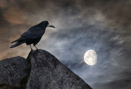 Raven sits on a stone against dramatic night sky with crescent Moon Stock fotó