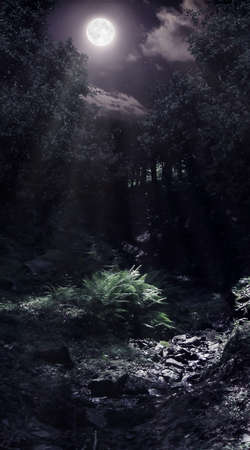 Forest glade and a brook lightened by the moon Stock fotó