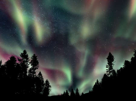 A picture of starry night sky and northern lights over the woods