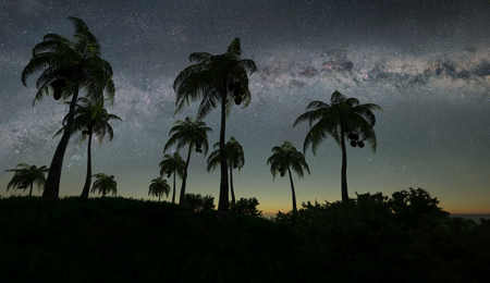 3d illustration of the palms against the sparkling stars of Milky Way Stock Photo
