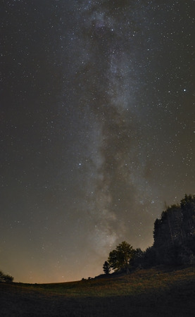 A picture of the majestic Milky Way over the meadow