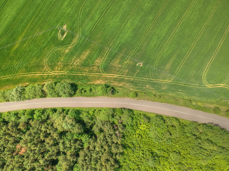Aerial picture of the green wheat field Banque d'images