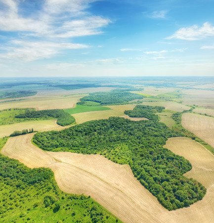 Aerial picture of the green forests surrounded by grain fields