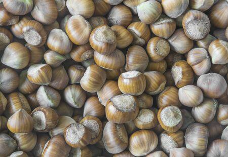 brown hazelnuts.