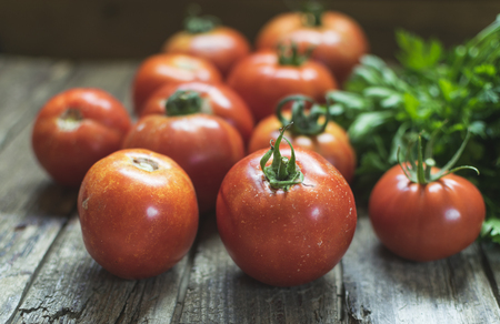 Group of fresh red tomatoes and parsley on wooden table. Selective focus, frontal view. Stock Photo