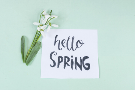 Hello spring calligraphy note decorated with snowdrops on light green background. Stock Photo
